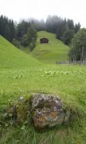 tipikus osztrák domboldal