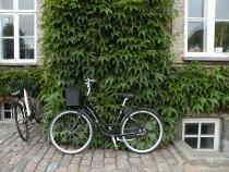 a dánok védjegy a bicikli